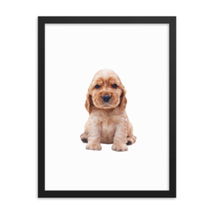 Dog Face Posters